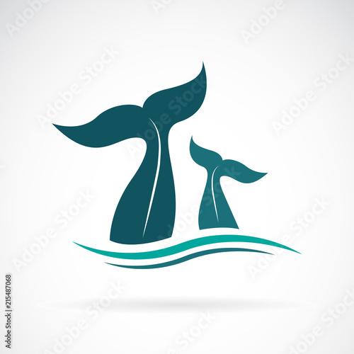 Naklejka premium Wektor konstrukcji ogona wieloryba na białym tle. Zwierząt. Stworzenie morskie. Łatwe edytowanie warstwowych ilustracji wektorowych.