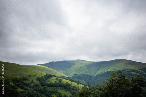 Carpathian forest before rainy night. Landscape with pine forests and mountains in summer. Zakarpattya, Ukraine.