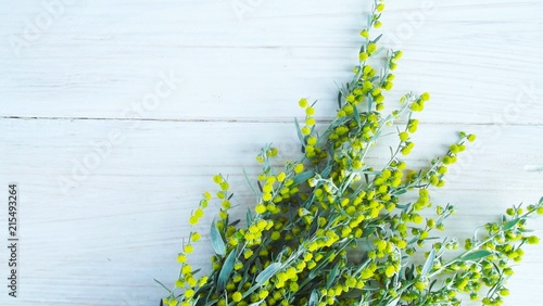 Beautiful blooming wormwood on wooden background. Canvas Print