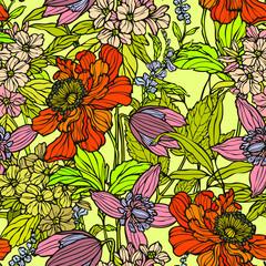 Fototapeta Maki Seamless pattern with poppy flowers