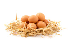 Eier Im Stroh