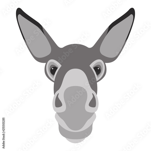 Fotografia donkey face head vector illustration flat style front