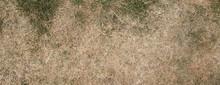 Ausgetrockneter Rasen