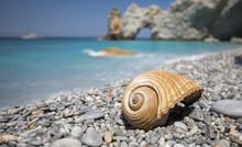 Wunderschöner Lalaria Beach M...