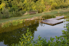Natural Swimming Pool Pond NSP...