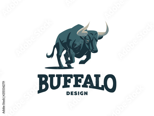 Photo Bull with big horns.
