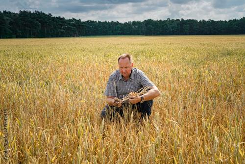 Valokuvatapetti Trockenheit - Dürre, Landwirt hockt ratlos in seinem  vertrockneten Getreidefeld