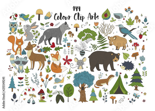 Big set of hand drawn forest illustraitions with color cartoon animals on a white background.