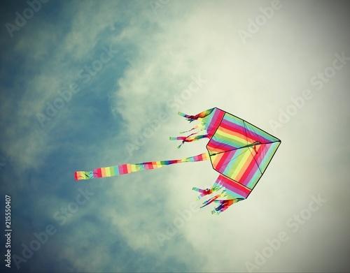 Aluminium Prints Dark grey big kite flies in the sky with vintage old effect