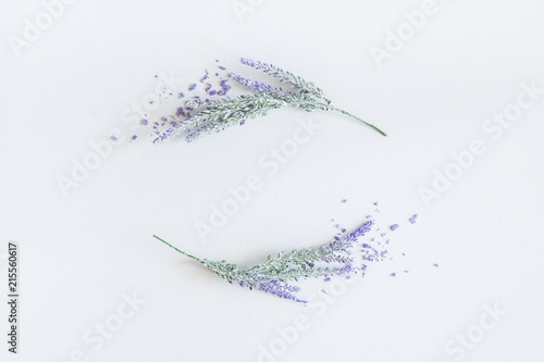 Lavender flowers on pastel gray background. Flat lay, top view, square