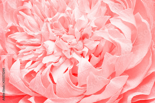 Fotobehang Bloemen the background of a huge beautiful flower made of paper