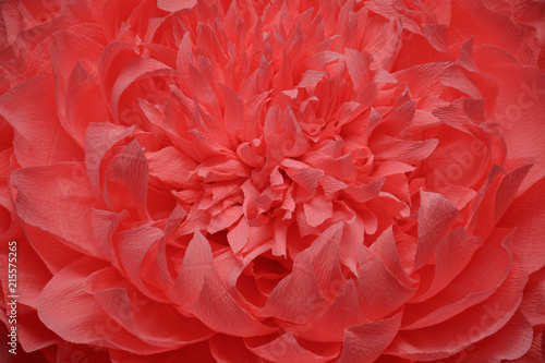 Tuinposter Bloemen the background of a huge beautiful flower made of paper
