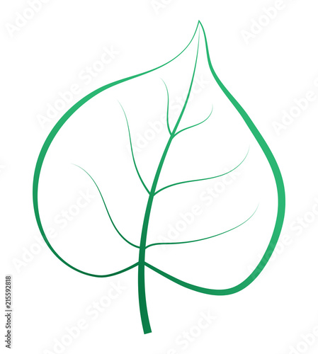 Obraz One green leaf isolated. Vector silhouette. - fototapety do salonu