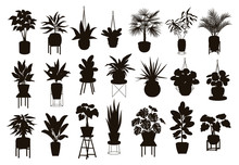 Silhouettes Collection Of  Dec...