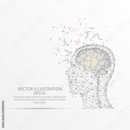 Cuadros en Lienzo Brain with human head low poly wire frame on white background.