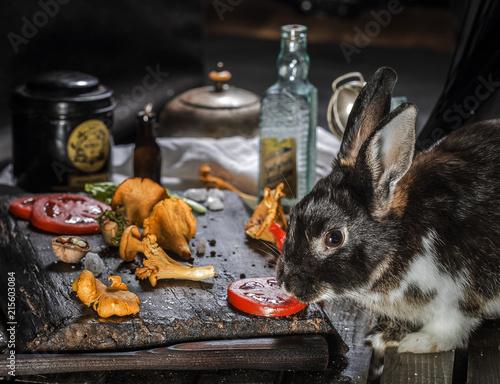 Zdjęcie XXL pieczarki kurki pomidory królik