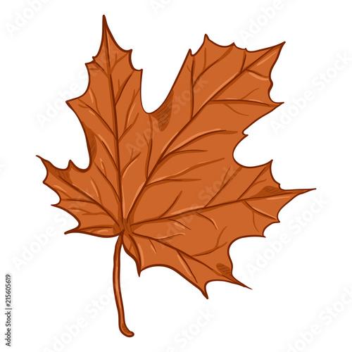 Fototapety, obrazy: Vector Cartoon Illustration - Autumn Fallen Orange Leaf of Maple