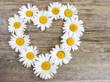Daisy Flowers In Heart Shape