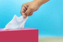 Hand Picked Tissue