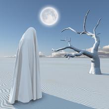 Desert Of Silence