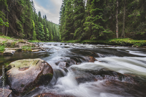 Canvas Prints Forest river Mountain river flowing in a deep green forrest. Long exposure, water flow in motion. Creek in deep Alaska like forrest, stones and waterfall.