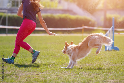 Big dog with handler running in agility competition Canvas Print