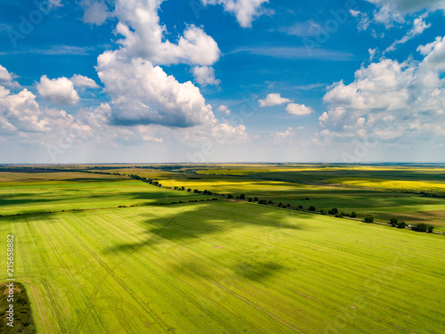Tuinposter Zwavel geel Aerial shot of beautiful agriculture fields with blue skies and fluffy clouds in summer