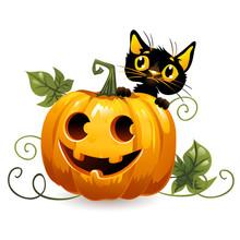 Cute Blaсk Cat With Halloween Pumpkin.