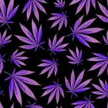 Texture For Design Wallpaper. Purple Leaves On Black Background. Ganja Marijuana Weed Seamless Pattern