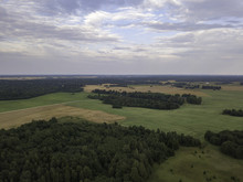 Aerial View Beautiful Forest Near Fields