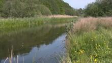 The Danish River Skjern Aa