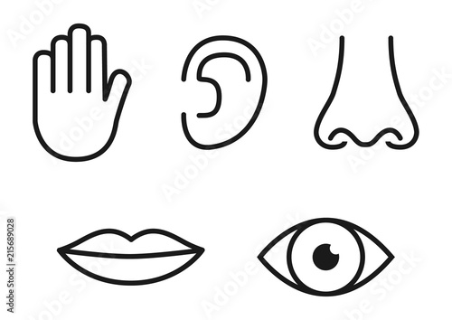 outline icon set of five human senses  vision  eye   smell  nose   hearing  ear   touch  hand