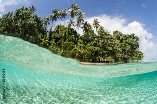 Tuinposter Eiland Tropical Island Surrounded by Clear, Warm Water