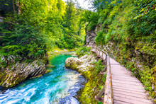 Vintgar Gorge, Slovenia. River Near The Bled Lake With Wooden Tourist Paths, Bridges Above River And Waterfalls. Hiking In The Triglav National Park. Fresh Nature, Blue Water In The Forest. Wild Trees