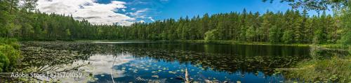Obraz Panorama einer wunderschönen Seenlandschaft im schwedischen Smaland - fototapety do salonu