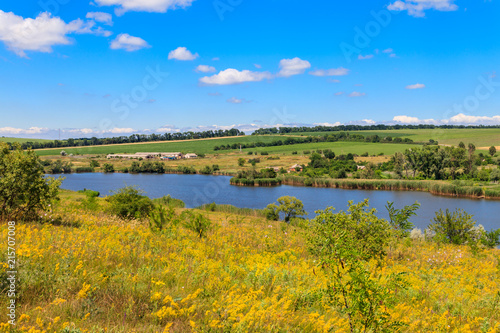 Deurstickers Honing Summer landscape with beautiful lake, green meadows, hills, trees and blue sky