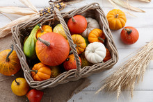 Wicker Basket With Colorful Pumpkins And Gourds For Halloween And Thanksgiving, Holiday Decoration