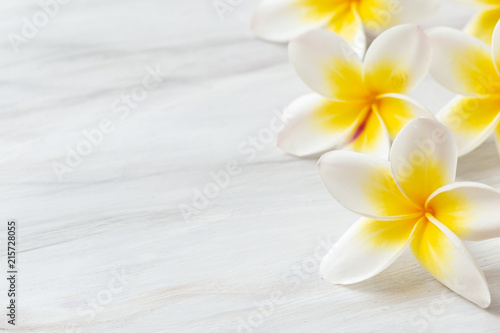 Canvas Prints Plumeria Frangipani flower on white background