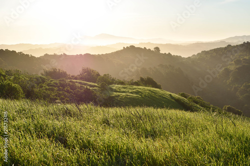Sun warming dewy mountains in Berkeley California. Wallpaper Mural