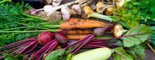 Harvest Of Fresh Organic Veget...