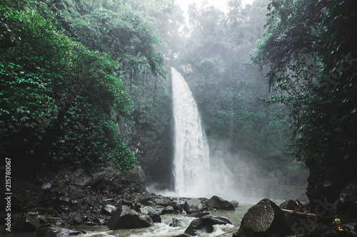 Foto auf Gartenposter Wasserfalle Bali waterfall Nung-Nung in deep jungle