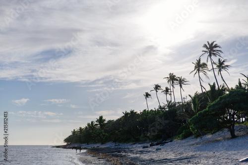 Staande foto Oceanië Afternoon on the Coral Coast of Fiji
