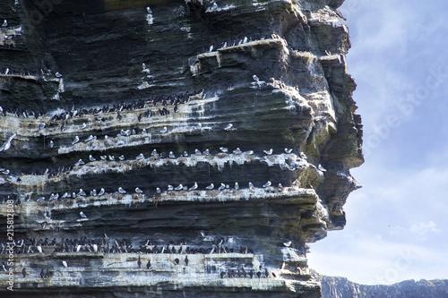 Foto op Plexiglas Europa Branaunmore Sea Stack
