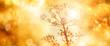canvas print picture - Colorful autumn background