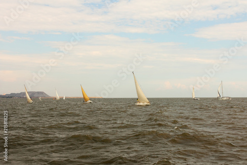 Sailing Yachts at Sea.