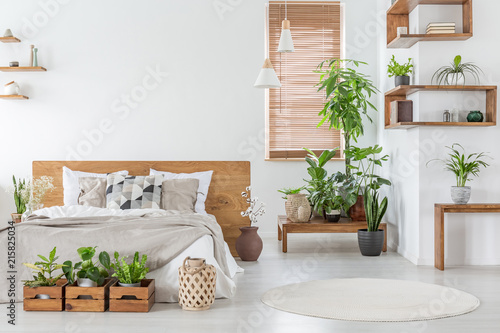 Foto  Real photo of a botanical bedroom interior with wooden shelves, tables, double bed, plants and empty wall next to a window with blinds