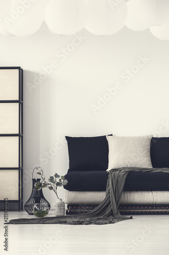 Staande foto Hoogte schaal Blanket and pillows on black couch in white modern living room interior with plant. Real photo