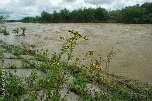 Foto op Plexiglas Rivier Flooding on a mountain river after heavy rains