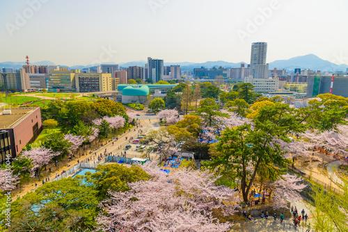 Valokuva  春の小倉城と小倉城からの眺め
