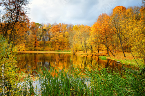 Foto op Canvas Herfst Colorful forest scene in the fall with orange and yellow foliage. Autumn city park view in Vilnius, Lithuania.